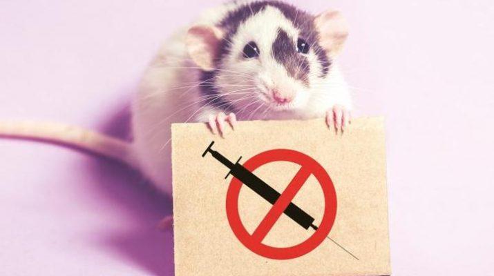vad är djurförsök