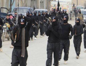 Hur har frågan rörande de fängslade IS-terroristerna hanterats?