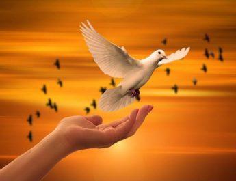 Realistisk fredskamp måste grundas i anti-militaristisk internationalism, pacifism och folklig mobilisering